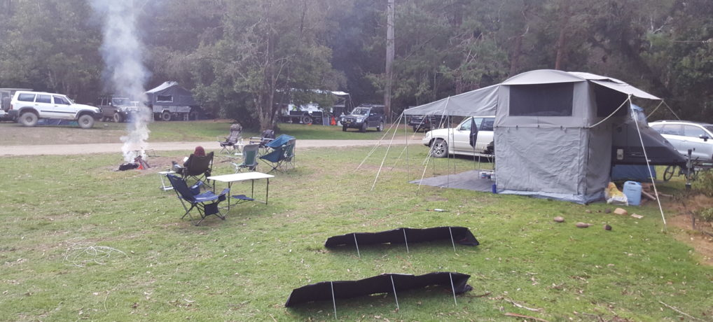 Coachwood Camping Area – Chichester State Forest